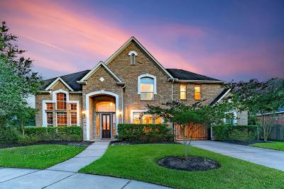 Katy Single Family Home For Sale: 28511 Pewter Knolls Drive