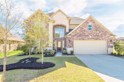 Conroe Single Family Home For Sale: 3302 Passage Ln