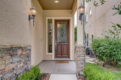 Houston Condo/Townhouse For Sale: 2934 Royal Oaks Crest