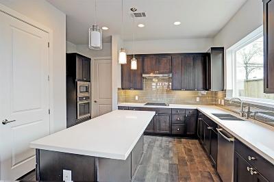 Houston Single Family Home For Sale: 1810 Winter Street