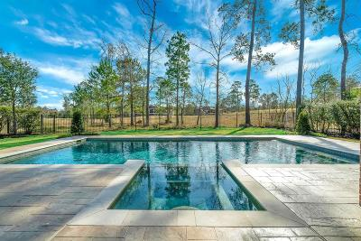 The Woodlands Single Family Home For Sale: 6 Chivary Oaks Court