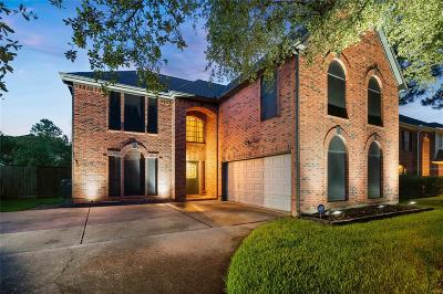 Pearland Single Family Home For Sale: 1007 Glenview Drive