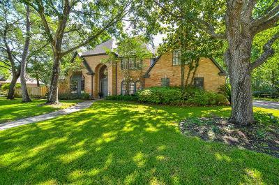 Houston Single Family Home For Sale: 919 Oak Parkway Drive