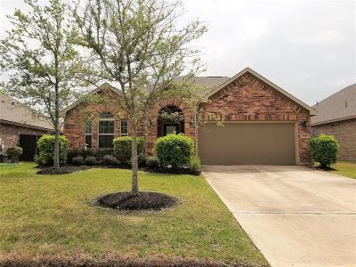 Houston Single Family Home For Sale: 1519 Tyler Point Lane