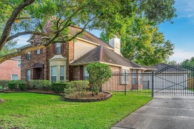 Houston Single Family Home For Sale: 1302 Rosemeadow Drive