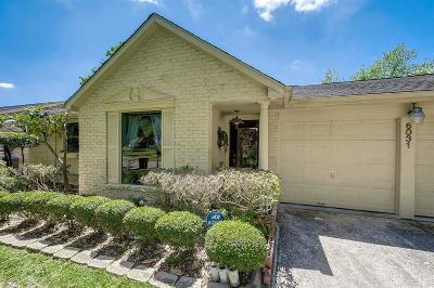 Houston Single Family Home For Sale: 6031 Bankside Drive