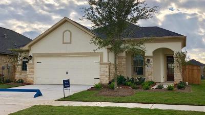 Fulshear Single Family Home For Sale: 29143 Turning Springs Lane