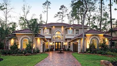 Missouri City Single Family Home For Sale: 2115 Plaza Ridge Dr