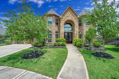 Katy Single Family Home For Sale: 27806 Warren Park Drive