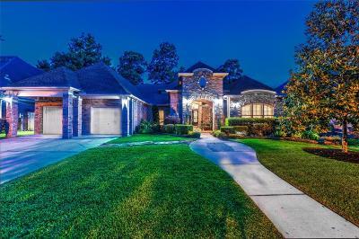 Porter Single Family Home For Sale: 20644 Southwood Oaks Dr