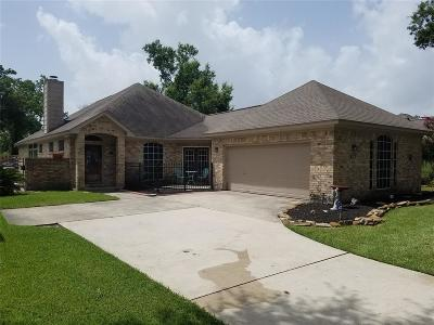 Baytown Single Family Home For Sale: 306 Caldwell Street