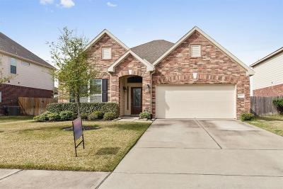 Tomball Single Family Home For Sale: 17411 Stamford Oaks Drive