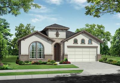 Missouri City Single Family Home For Sale: 10603 Vacarro Court