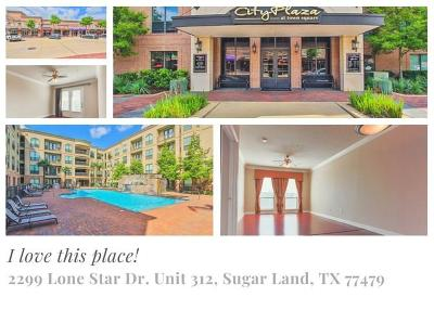 Sugar Land Condo/Townhouse For Sale: 2299 Lone Star Drive Drive #312
