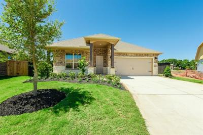 Pearland Single Family Home For Sale: 2507 Kaman Lane
