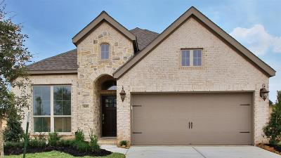 Tomball Single Family Home For Sale: 19435 Golden Lariat Drive