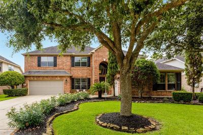 League City Single Family Home For Sale: 6127 Carlisle Lane