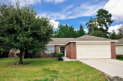 Conroe Single Family Home For Sale: 16309 Sun View Lane