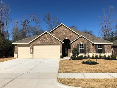 Tomball Single Family Home For Sale: 31023 Raleigh Creek Drive