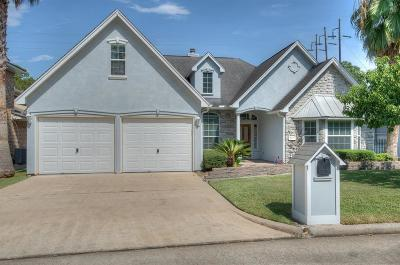 Montgomery Single Family Home For Sale: 13242 Northshore Drive