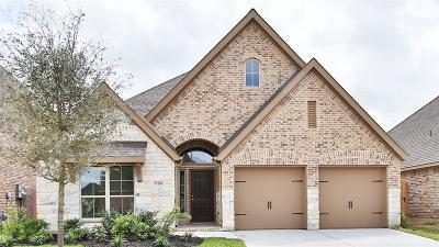 Pearland Single Family Home For Sale: 13306 Lazy River Lane