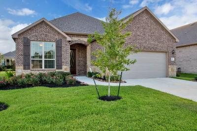Single Family Home For Sale: 250 Galloway Court