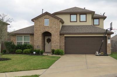 Rosharon Single Family Home For Sale: 9906 Bezeled Circle Lane