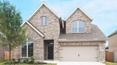 Pearland Single Family Home For Sale: 13603 Canyon Ranch Drive