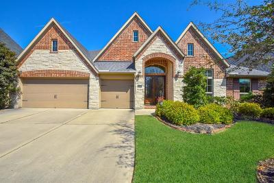 Katy Single Family Home For Sale: 27514 Beauford Drive