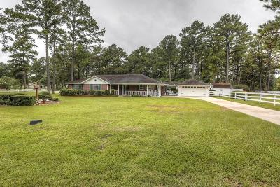 Single Family Home For Sale: 1207 Goodson Loop