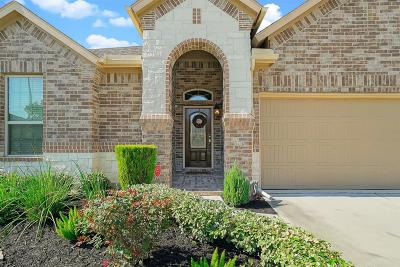 Spring Single Family Home For Sale: 3900 Enchanted Timbers Lane
