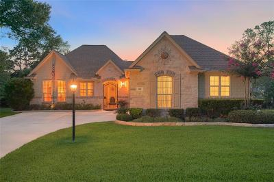 Montgomery Single Family Home For Sale: 102 Blue Hill Drive