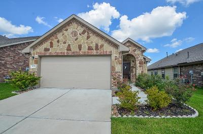 Katy Single Family Home For Sale: 20706 Winghaven Drive