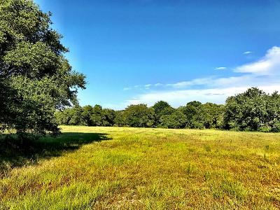 Rock Island TX Farm & Ranch For Sale: $450,000