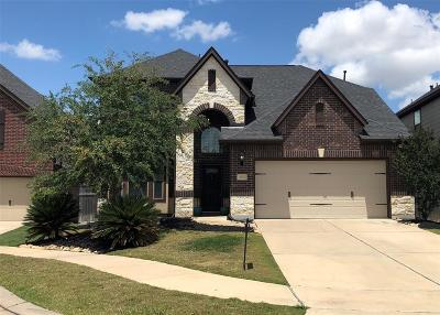 Fulshear Single Family Home For Sale: 4926 Scenic Horizon Lane
