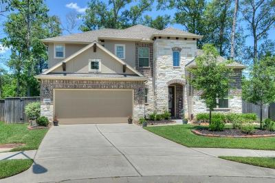 New Caney Single Family Home For Sale: 23515 Millbrook Drive