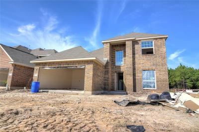 Spring Single Family Home For Sale: 1447 Reno Ridge