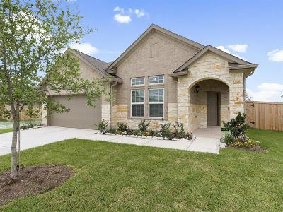 Pearland Single Family Home For Sale: 6020 Pearland Place