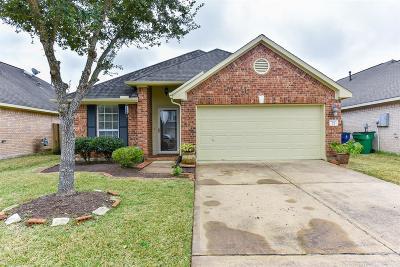 Manvel Single Family Home For Sale: 23 Wheeler Ridge Circle