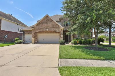 Pearland Single Family Home For Sale: 13108 Indigo Creek Lane