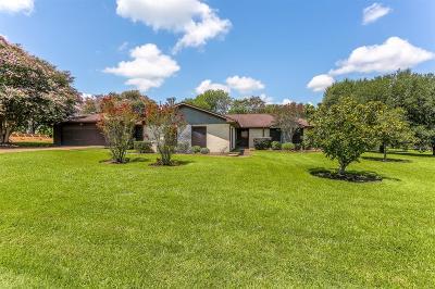 Single Family Home For Sale: 335 San Angelo Drive