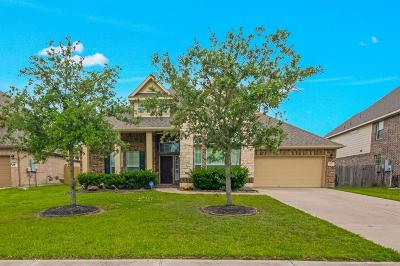 Dickinson Single Family Home For Sale: 1745 Coral Cliff Drive