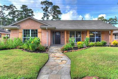 Houston Single Family Home For Sale: 6435 Cindy Lane