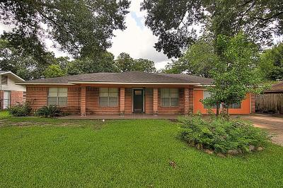 Houston Single Family Home For Sale: 3807 Galway Lane