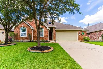 Tomball Single Family Home For Sale: 21134 Magic Spell Drive