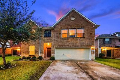 Alvin Single Family Home For Sale: 1297 Pinto Pass