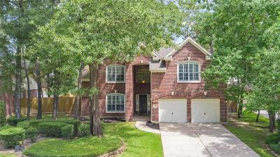The Woodlands Single Family Home For Sale: 18 Night Heron Place