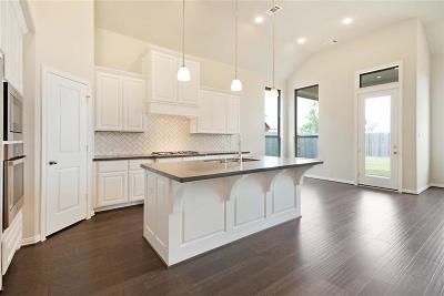 Fulshear Single Family Home For Sale: 28434 Asher Falls Lane