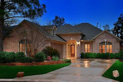 The Woodlands Single Family Home For Sale: 18 Rockledge Drive