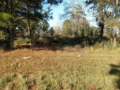 Tomball Residential Lots & Land For Sale: 1400 Hicks